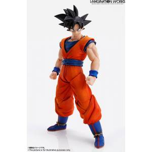 IMAGINATION WORKS Son Goku Dragon Ball Z [Bandai]