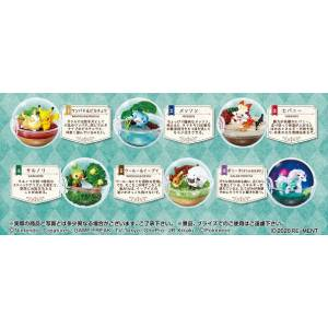Pokemon Terrarium Collection EX Galar Region Part 6 Pack BOX [Goods]
