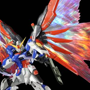 "RG 1/144 Expansion effect unit for Destiny Gundam ""Wings of Light"" Limited Edition [Bandai]"