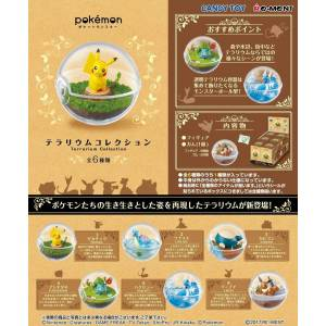 Pokemon - Terrarium Collection 6 Pack BOX [Goods]